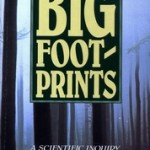 Bigfootprints