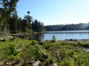 Carlson Lake (4)