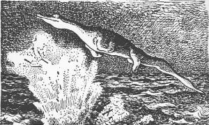 Le serpent-de-mer de l'U-28 (1915), d'après Richard Hennig